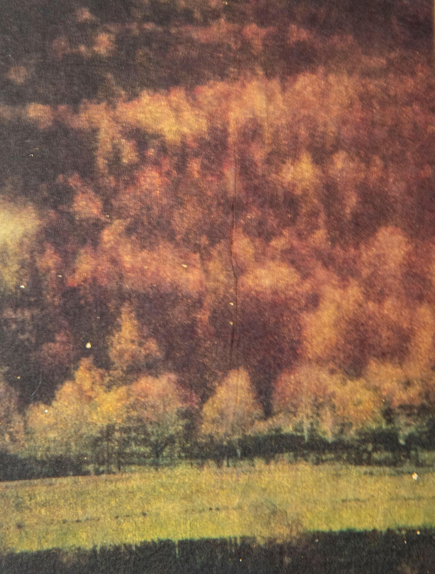 xiansera goldart red trees